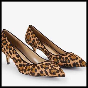 ANN TAYLOR Calf Hair Leopard Print Pumps NWOB